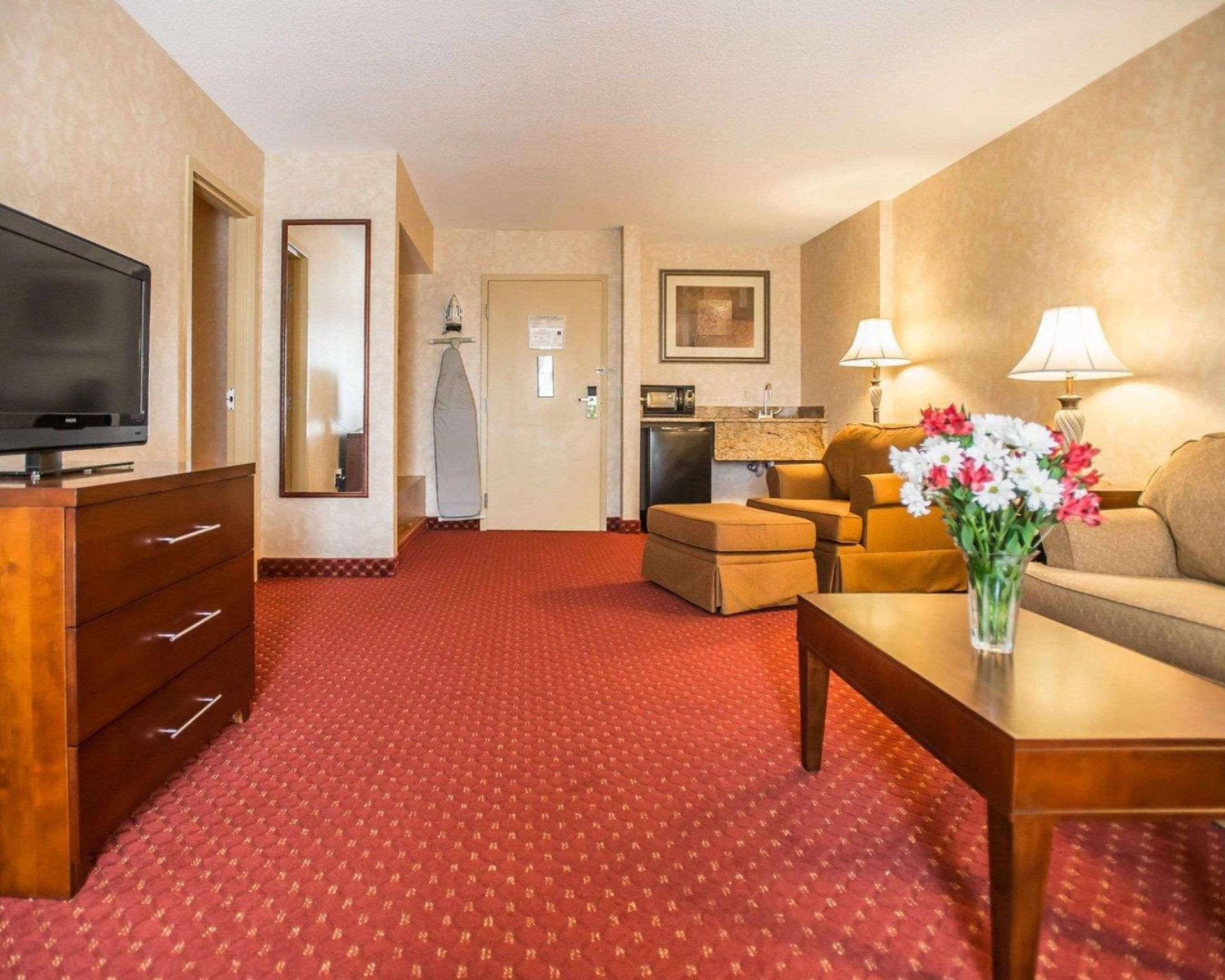 Suite with 1 King bed and Sofabed - No Smoking, No Pets