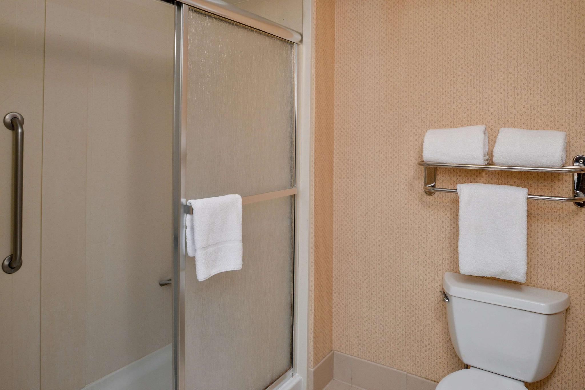 Premium 1 King Bed 1 Bedroom Suite Non-Smoking