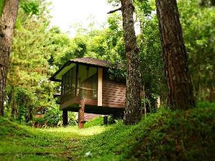伊甸自然公园和度假村
