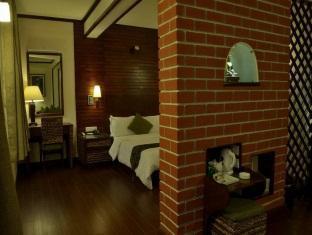 蕁麻和蕨類植物酒店