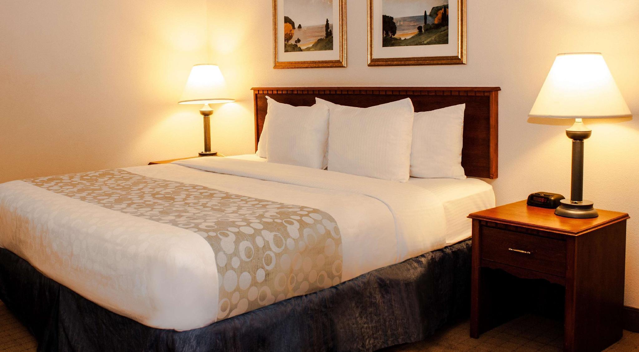 1 King Bed, Non-Smoking