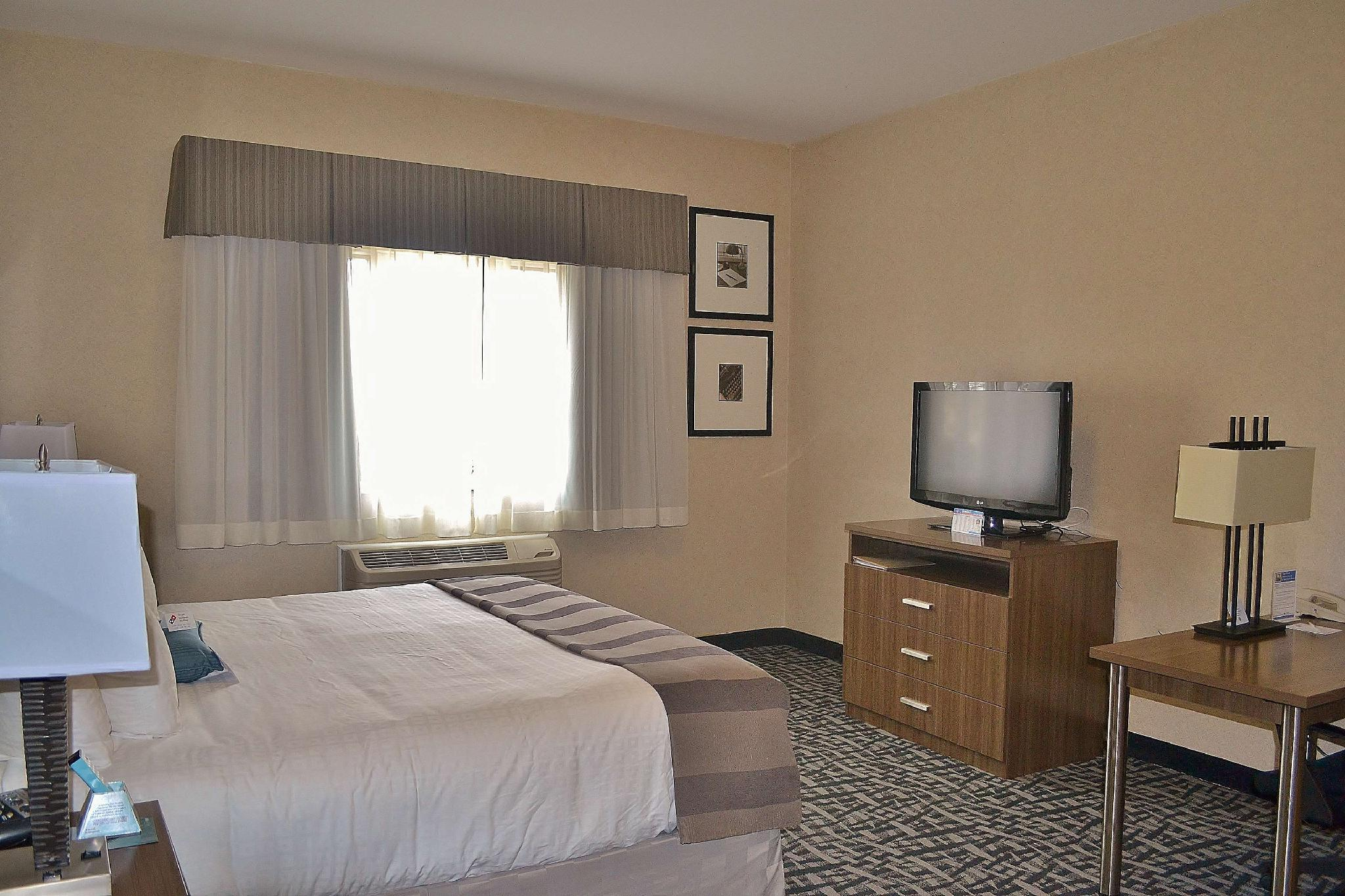 Suite-1 King Bed