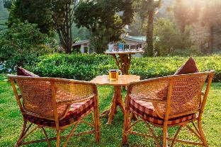 庫奴爾茶巢自然度假村
