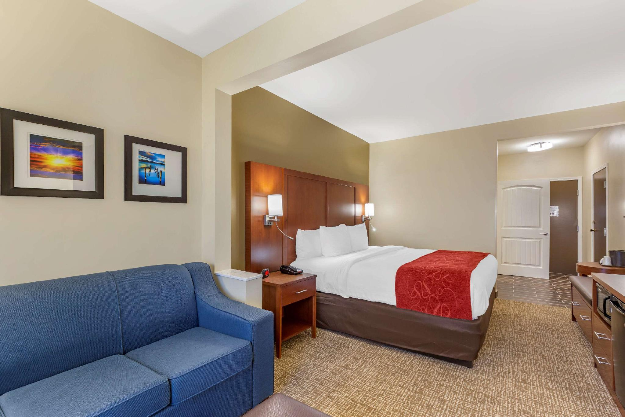 1 King Bed, Suite, Nonsmoking, Accessible