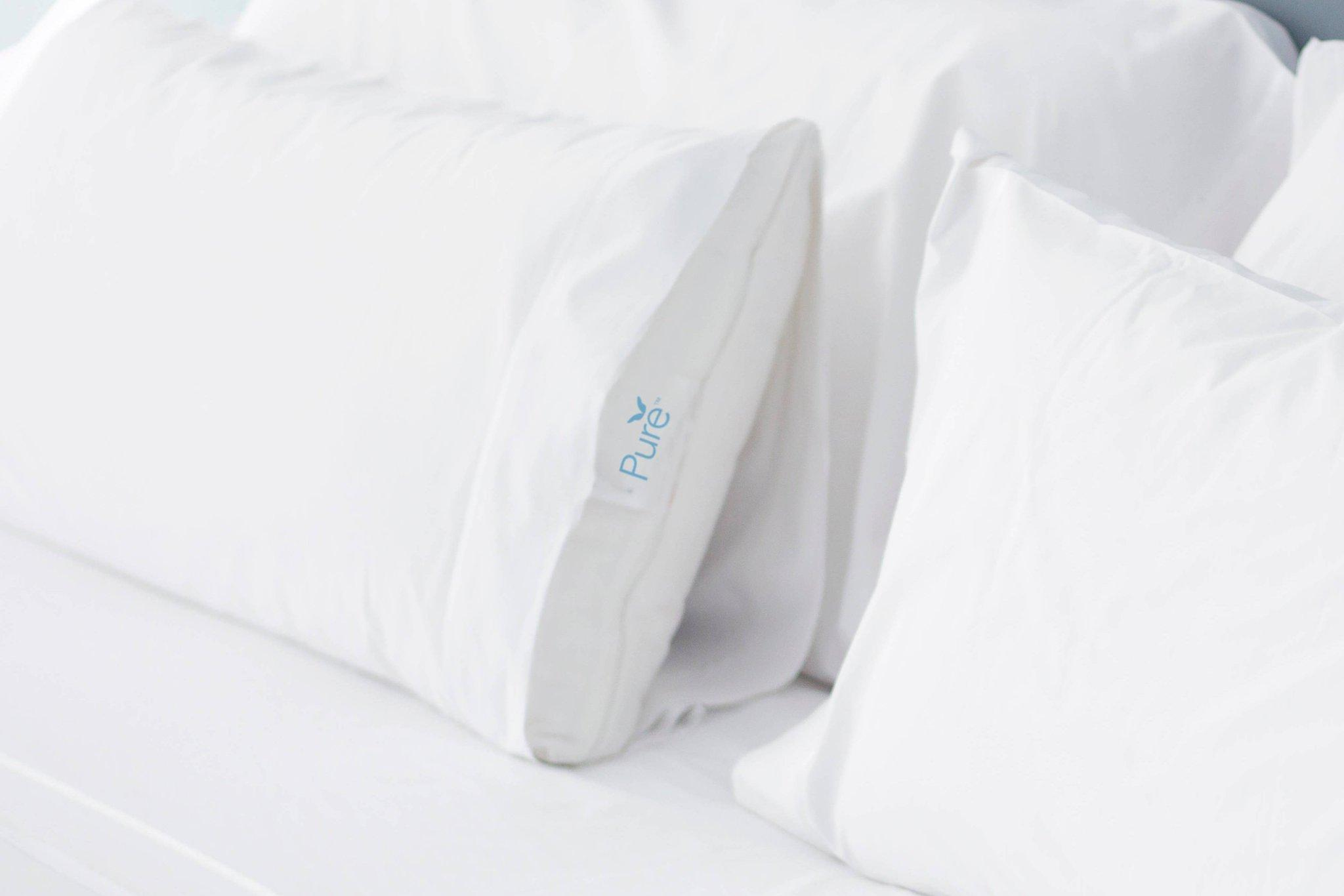 Pure Allergy Feather Free, Guest room, 1 King
