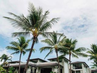 道格拉斯港铂尔曼海神庙度假酒店及水疗中心