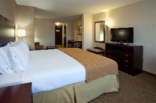 1 King Bed Suite