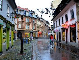 /nana-s-apartments/hotel/ljubljana-si.html?asq=jGXBHFvRg5Z51Emf%2fbXG4w%3d%3d